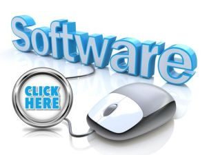 Payment Gateway for Software Selling Merchant